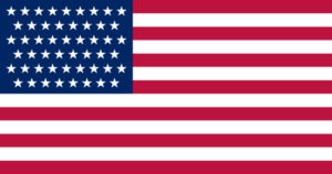 USA flaga 51 stan