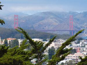 Widok na Golden Gate z parku Buena Vista, San Francisco